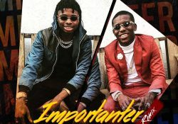 Zamorra ft. Small Doctor – Importanter (Remix)