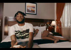 The Flowolf x Dremo – You Are Cancelled